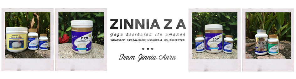 zinniaza.com