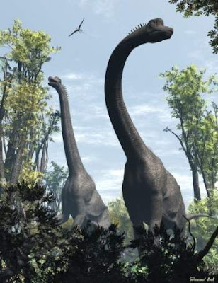 Giraffatitan brancai