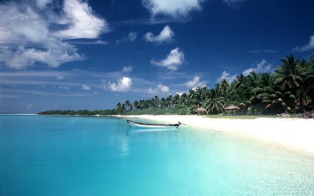 Strand, zee en bomen