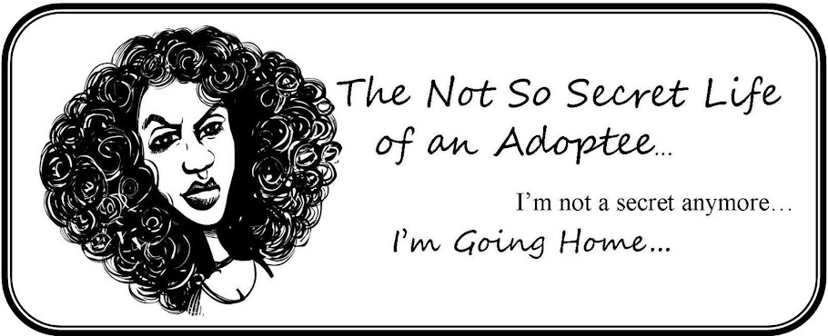 The Not So Secret Life of an Adoptee...Shhhhh they might hear you.