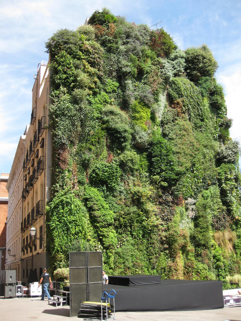 Bensozia patrick blanc 39 s vertical gardens for Vertical garden designs