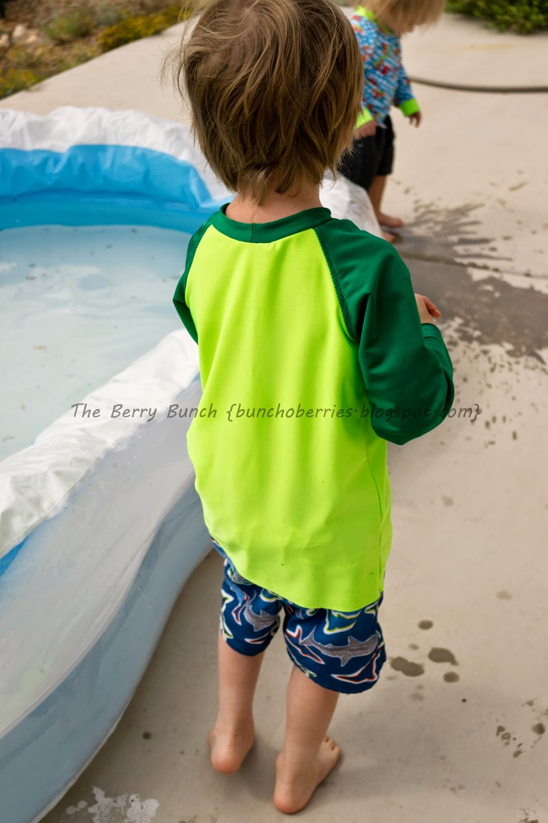 The Berry Bunch: GYCT Designs: Rival Raglan as Swimwear! {Monthly Monday Madness Sale}