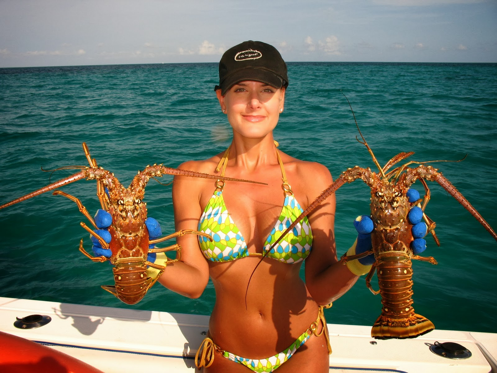 How to Create Lobster Farms forecasting