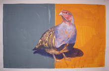 'Pigeon On Gray Gold 4'
