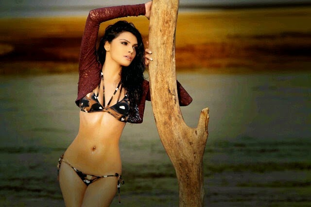sherlyn chopra bikini photo