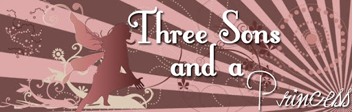Three Sons And A Princess Blogspot