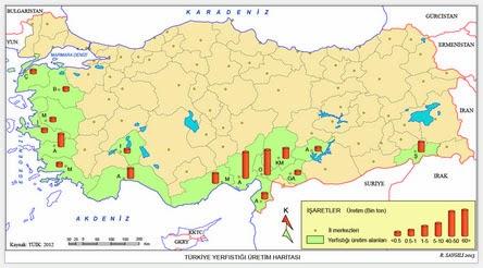 T�rkiye Yer F�st��� �retim Haritas�
