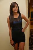 vithika sheru latest glamorous photos-thumbnail-14