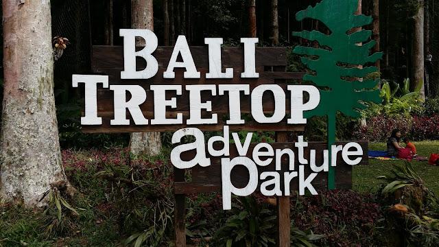 Bali Treetop Adventure Park