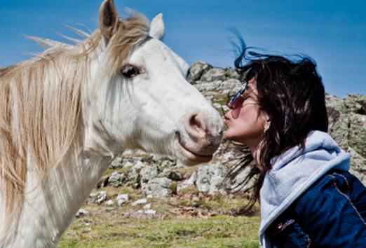 Istri Cium Kuda Suami Minta Cerai Bagaimana Ekspersi Istri Saat Ciuman