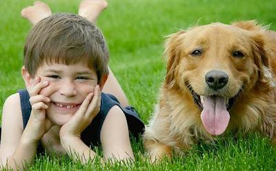 Los niños y los perros