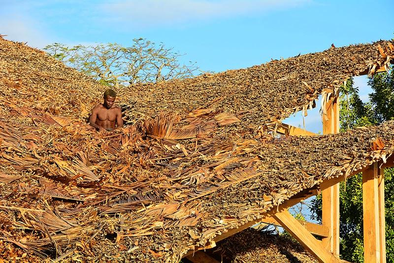 Moderna Vivienda con Techo de Paja en Madagascar