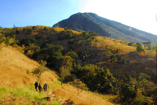 http://4.bp.blogspot.com/-c81qzIfCFec/UaZTNlU2ZVI/AAAAAAAAAkY/nWCUrvIdLQs/s1600/talpat-hill-baluran-NP.jpg