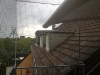 Dachterrasse mit Katzennetz in Bochum