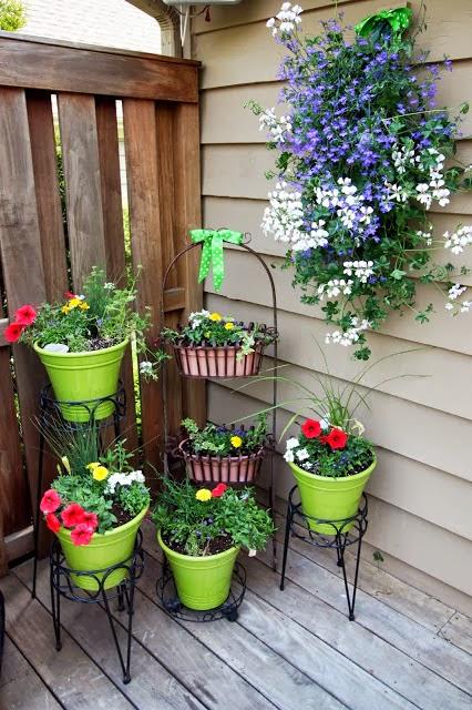 Las plantas en espacios peque os - Plantas para macetas exterior resistentes ...
