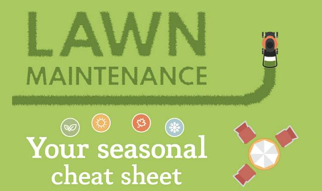 Lawn maintenance: your seasonal cheat sheet