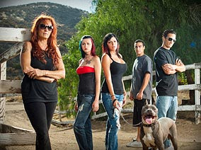 Pitbulls+and+parolees+crew.jpg