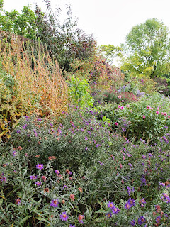 Beautiful autumn planting, Garden design London and Sussex