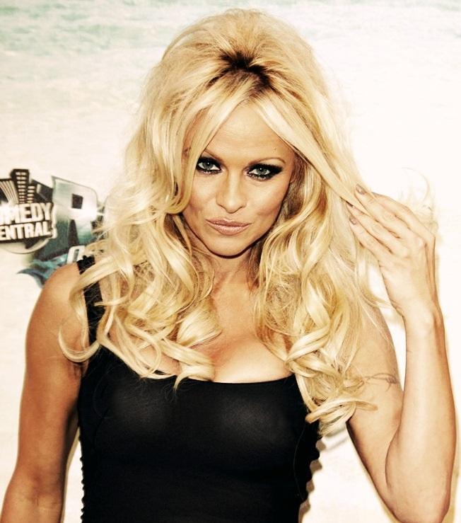 Pamela Anderson see-thru dress at the David Hassellhoff roast