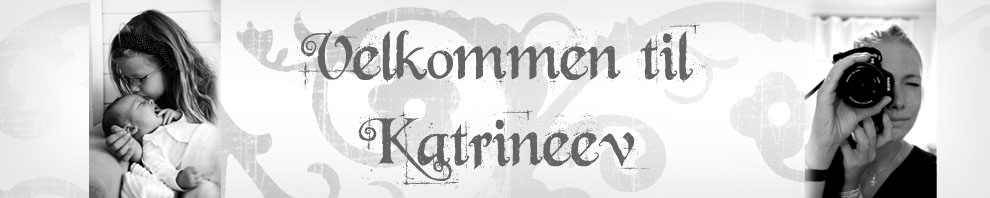 Katrine's lille verden