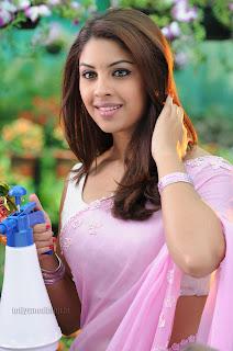 Richa Gangopadhyay Stunning Beauty in Beautiful Saree for movie BHAI