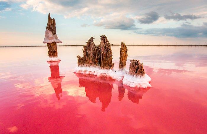 Розовое соленое озеро