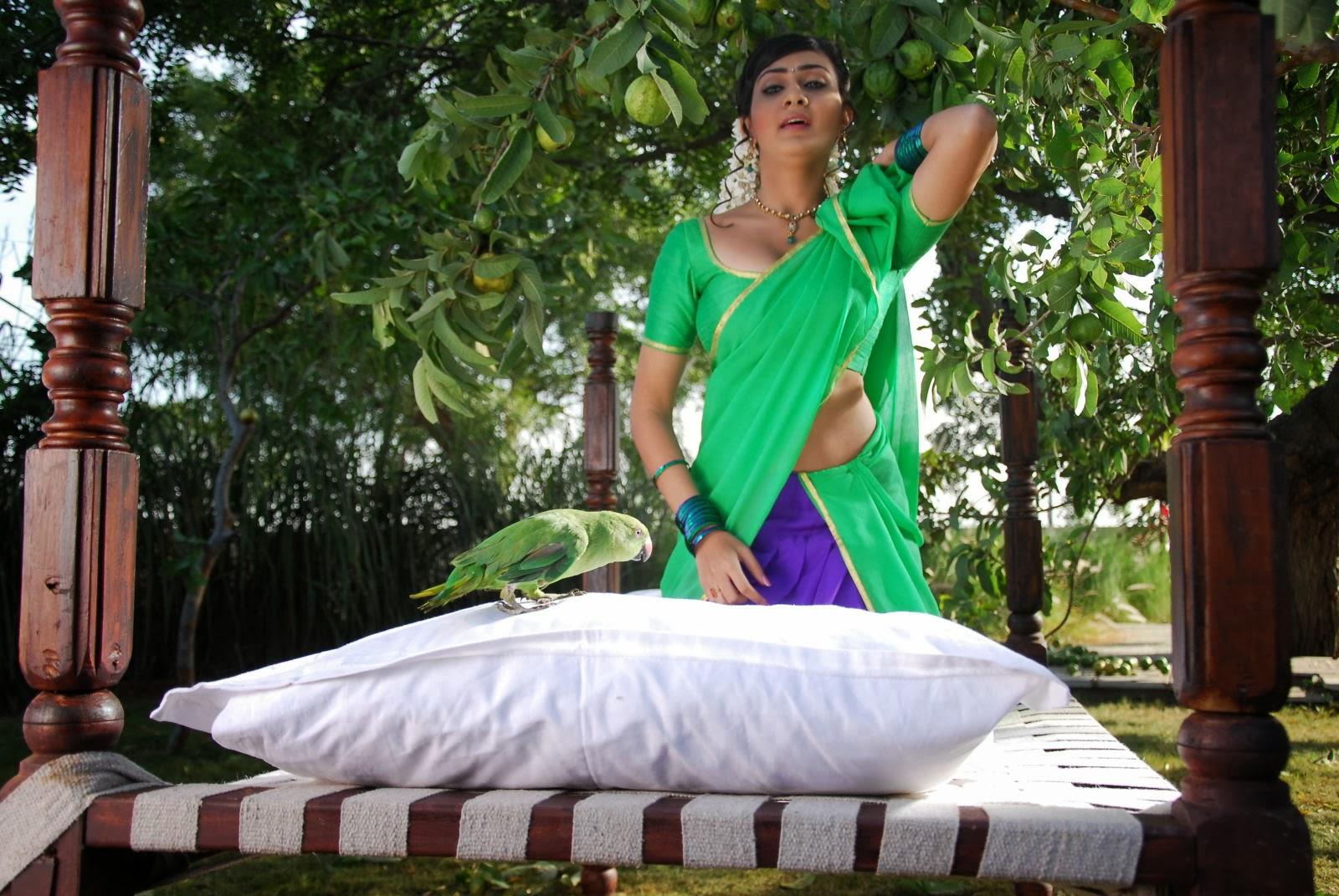 Neelam upadhyaya latest hot photos in green saree