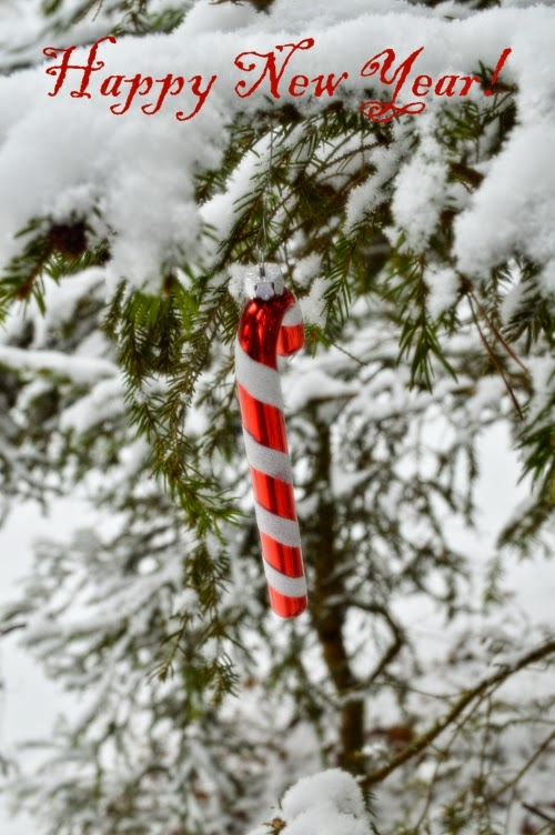 happy new year, card, wish, candy cane, snow, red, white