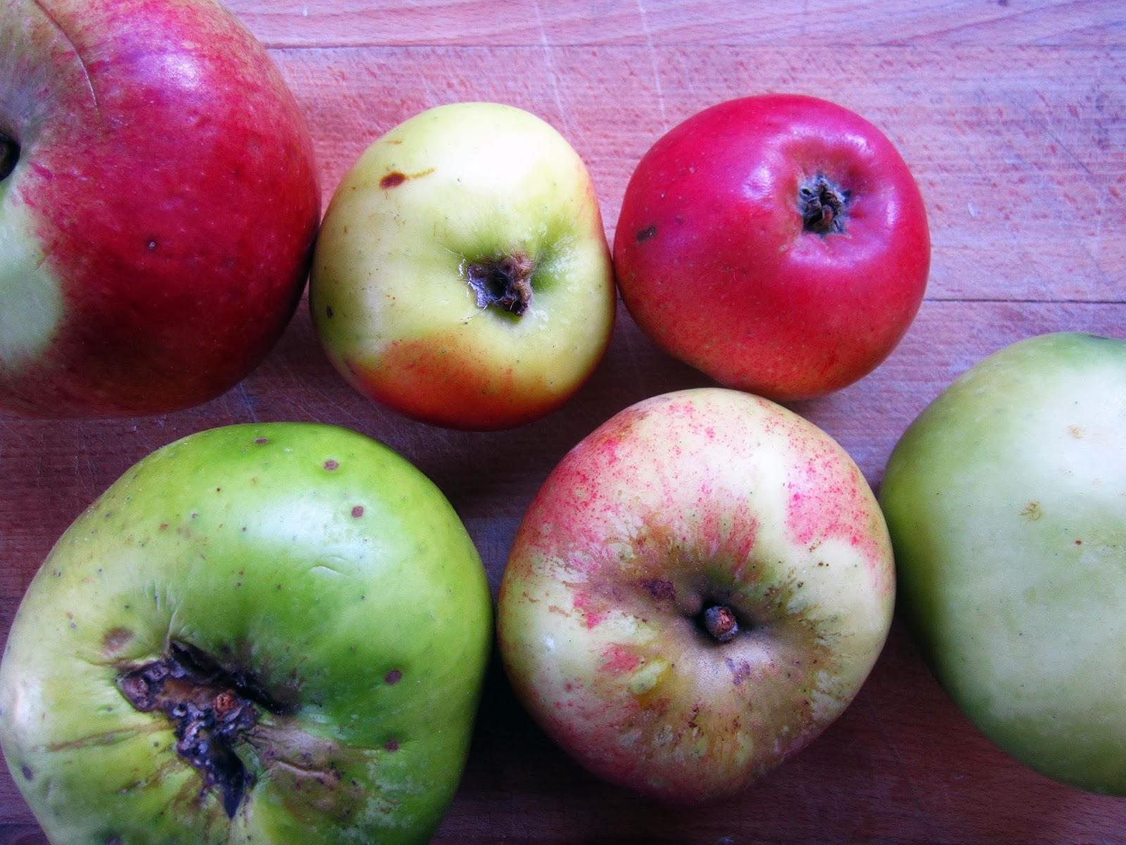 Spiced Apple Chutney | The Grazer