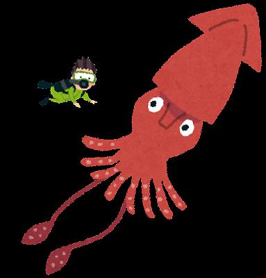 ダイオウイカのイラスト(深海魚)