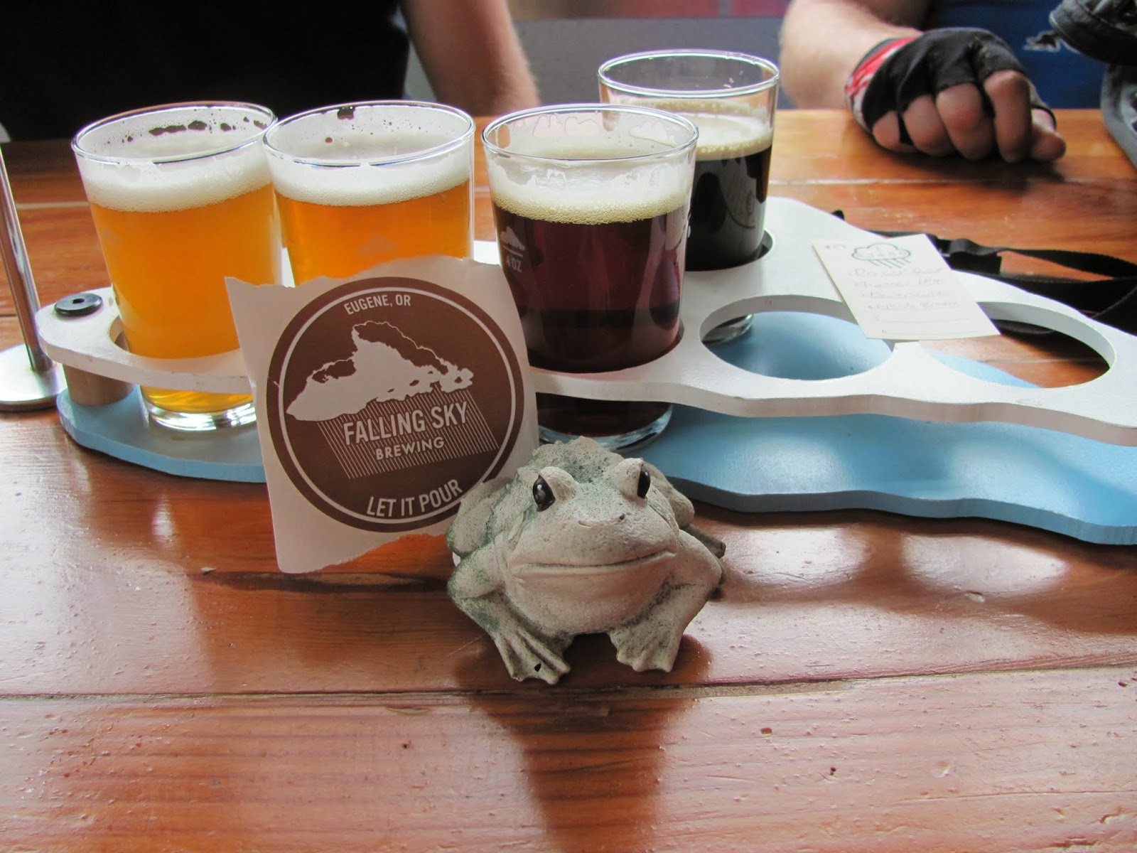 Frog poses with the flight of beverages at Falling Sky Brewery in Eugene, Oregon
