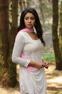 Actress Richa Gangopadhyay Picture Gallery from Sarocharu 0009