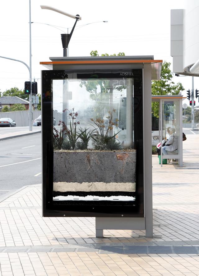 Ponto de TRAM com jardim dentro de vidro