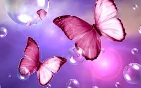 تفسير الفراشة في الحلم,معني فراشة في منام Butterfly In a dream