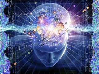 Pineal Gland: the Gateway to Other Dimensions or a Quantum Computer in our Head