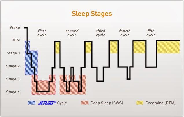 سلاسل النوم , sleep cycles