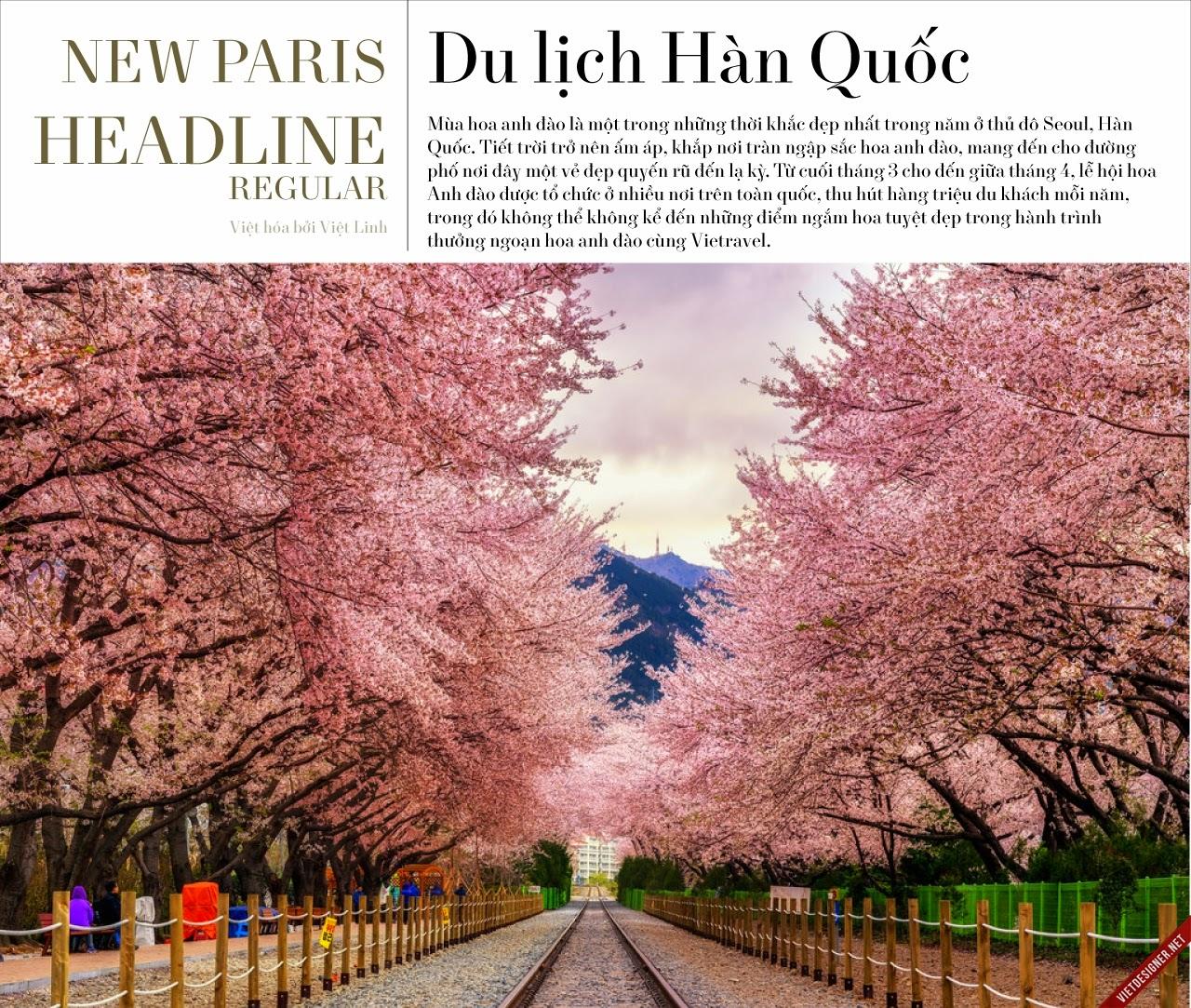 [Serif] NewParis Headline Regular Việt hóa