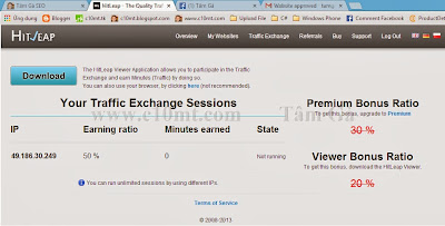 Your traffic exchange sessions hitleap viewer