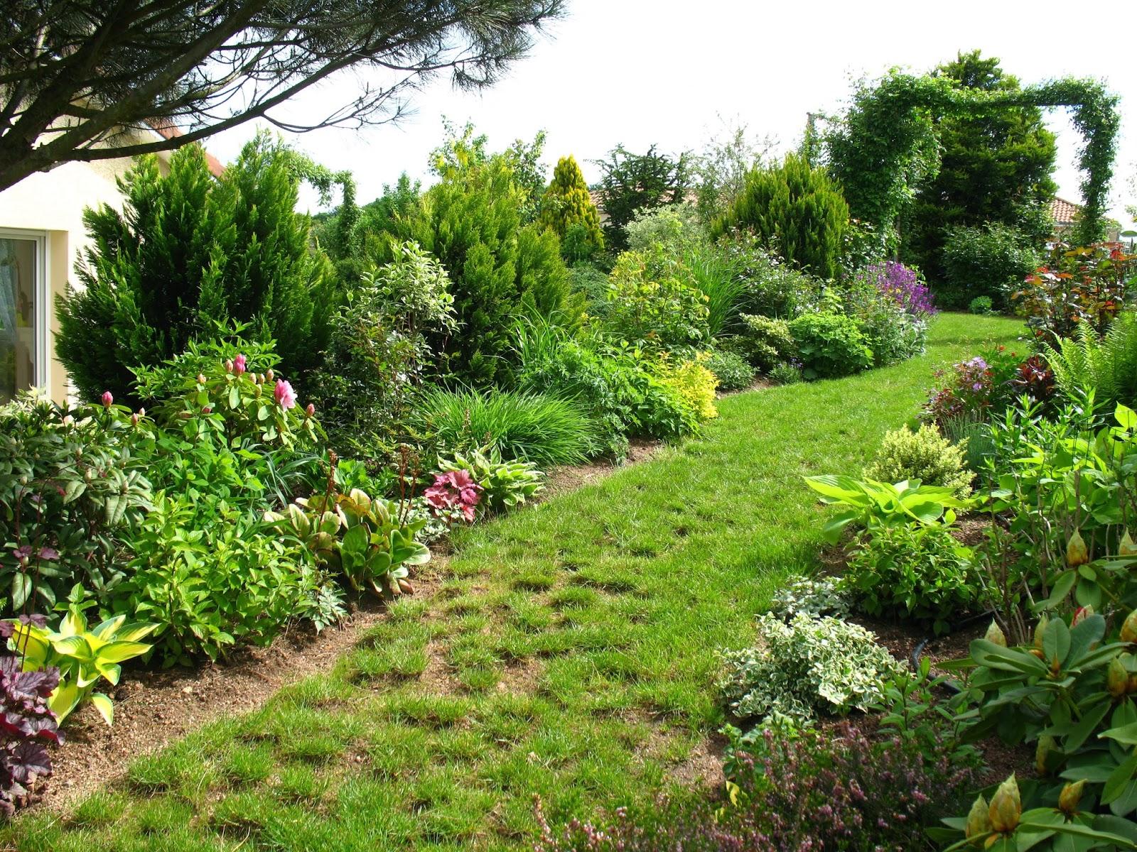 Roses du jardin ch neland l 39 essor du jardin for Jardin plantation