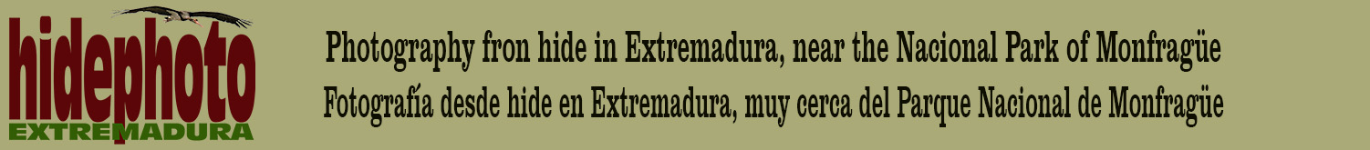 hidephotoEXTREMADURA