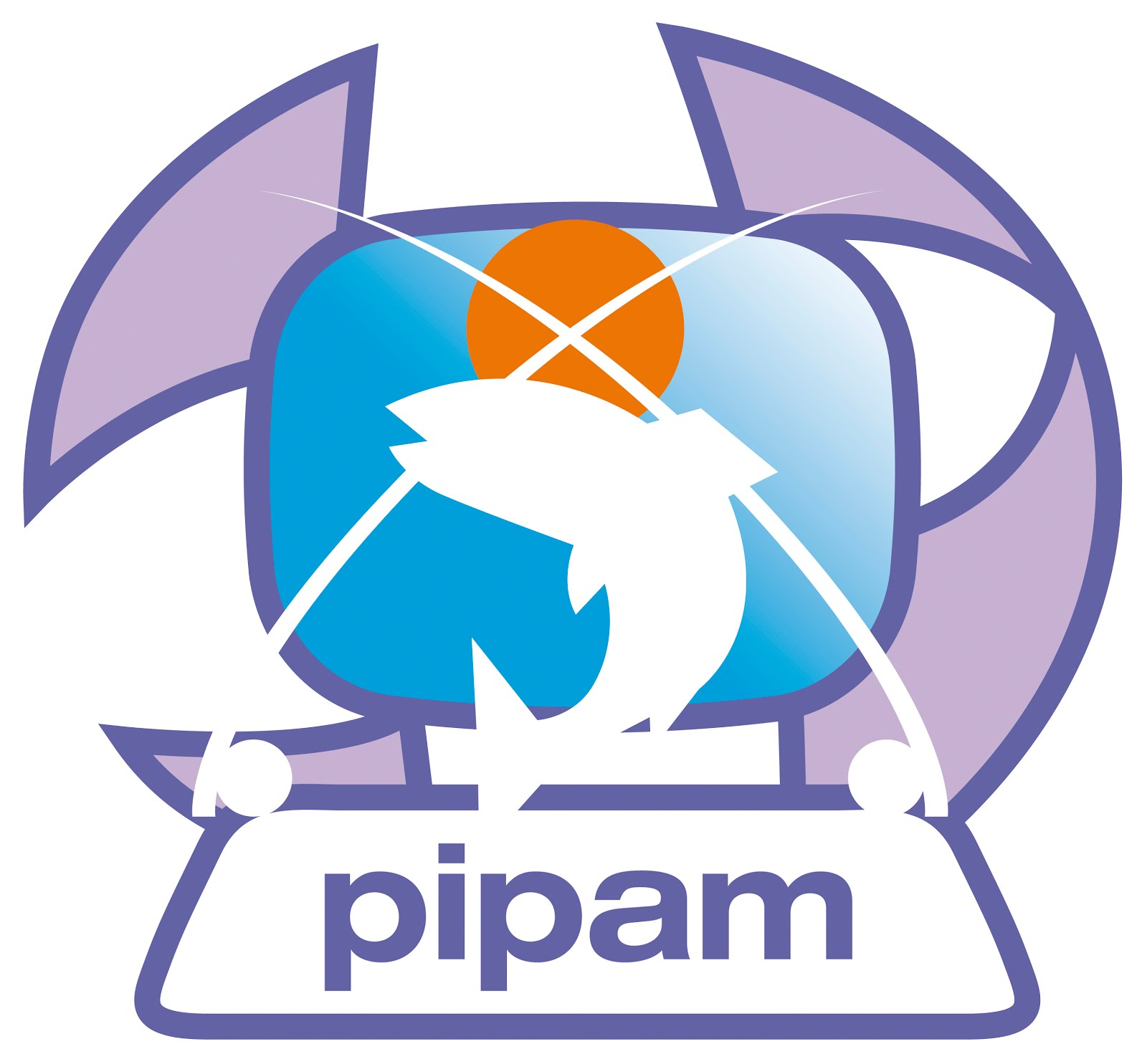 PIPAM