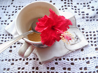 hibiscus flower in my tea