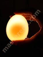 percobaan unik dengan telur dan cuka mastereon