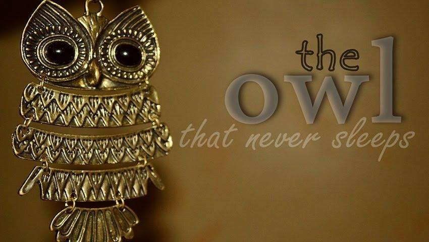 Owl That Never Sleeps