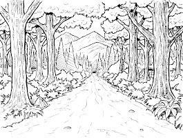 Free Forest Animal Coloring Pages