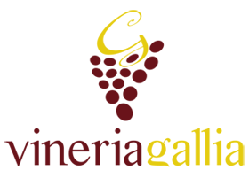 www.vineriagallia.it