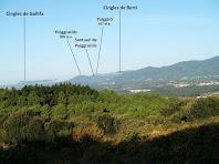 Vistes del Puiggraciós i les cingleres de Bertí des de la zona de vinyes
