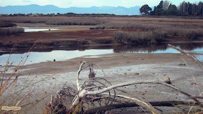 abel-tasman-paisaje-desolador