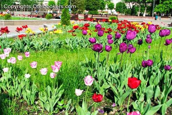 Spring_in_Belarus