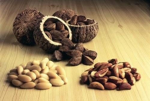 Jenis Kacang Yang Menyehatkan